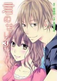 Kimi No Sei manga