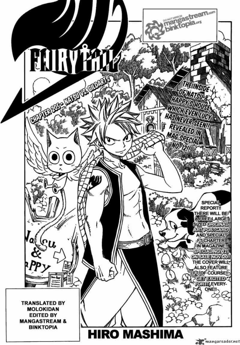Fairy Tail 205